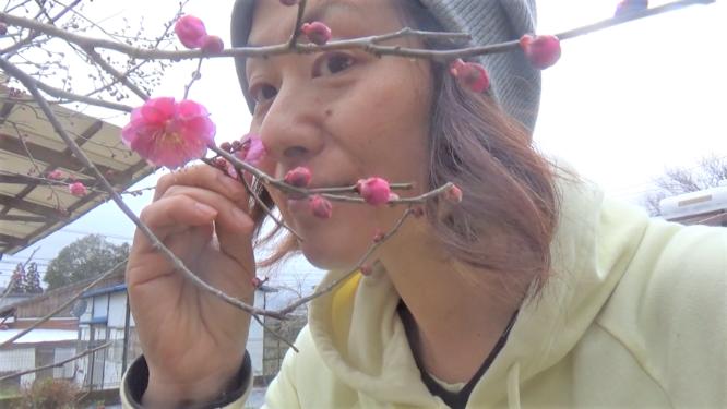 梅の花の香りを嗅ぐリコネクションTA&メンター江藤美智子