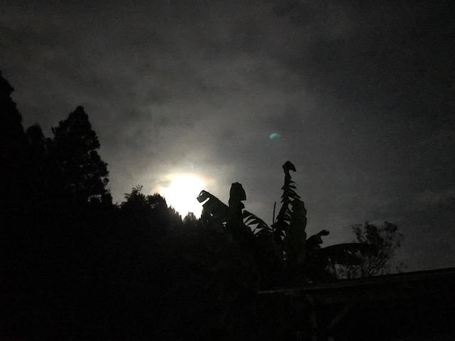 ヒーリングマタリキオフィスからみずがめ座の満月を望む